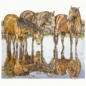 """""""Reflective Communication"""" 18 x 24"""" original colored pencil; also available as signed limited edition giclee print"""