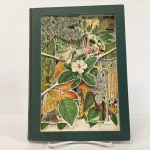 An Introduction to Trees Book Carving