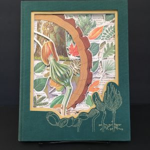 The Secret Life of the Forest Book Carving