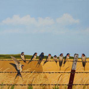 Barn Swallows.    18 x 24