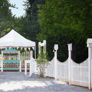 White Fence.    24 x 36